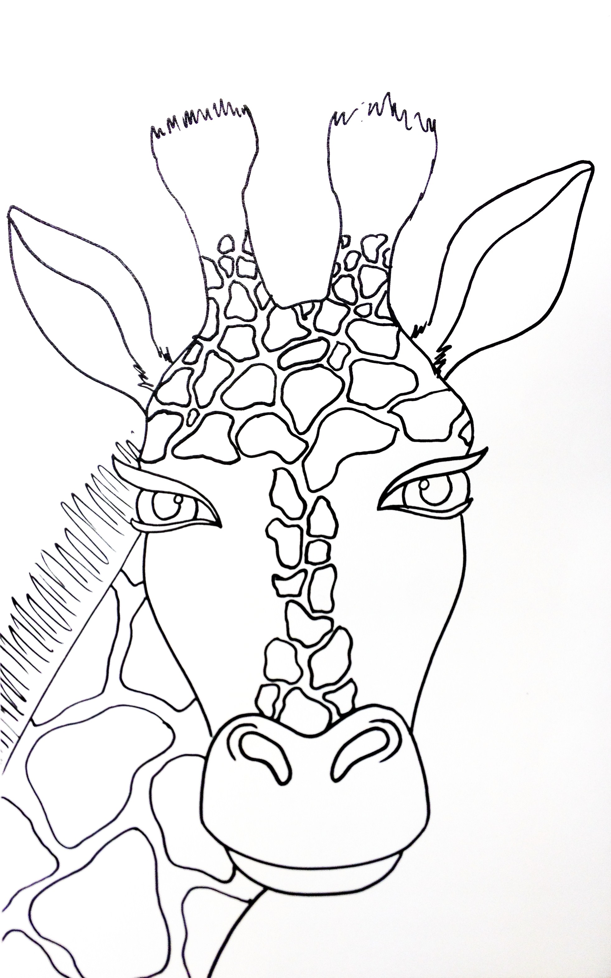 Giraffe Drawing Fauvism and color mood emotionArt Project