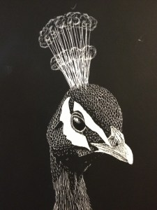 HS Scratch Art Lesson Scratch Board Value through line