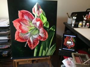 Michelle East Art- Amaryllis 2015 WIP
