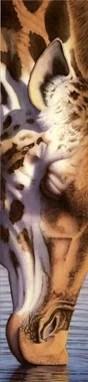 Mitch Ridder Giraffe Watercolor