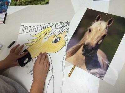 Horse Portrait Oil Pastel Drawing Art Lesson