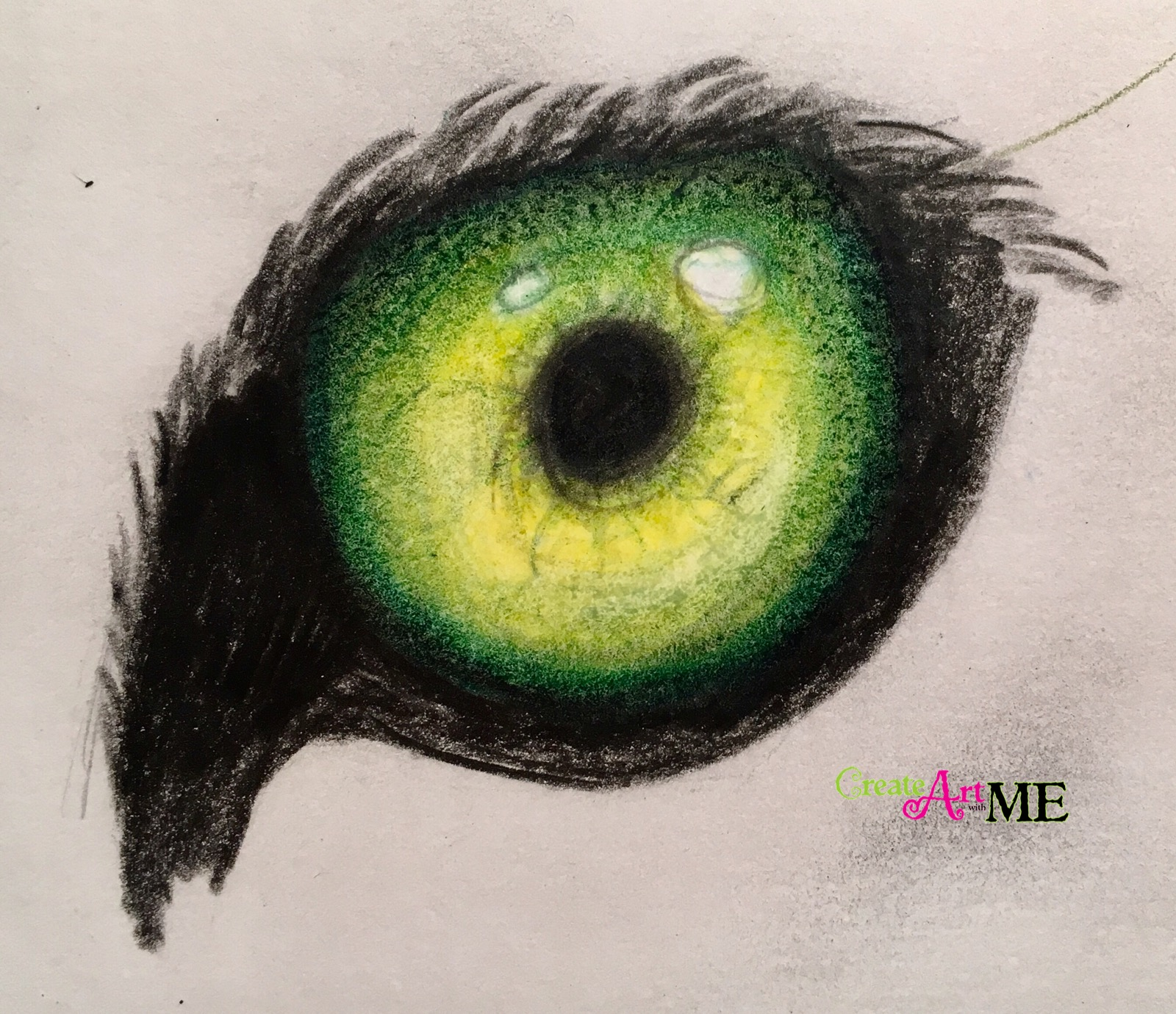 Emphasis Animal Eyes Spot Color Drawing - Create Art with ME
