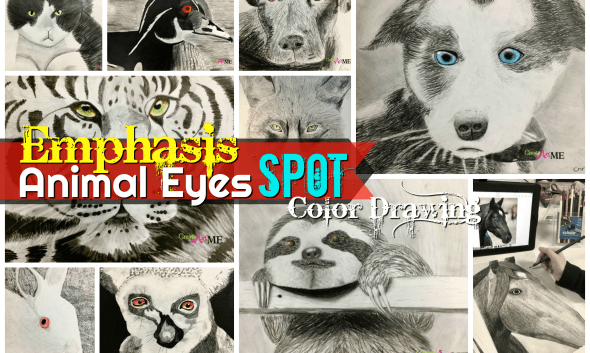 Emphasis Animal Eyes Graphite and Colored Pencil Drawing