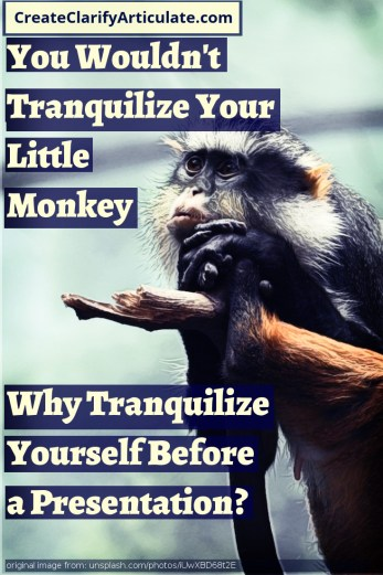 Would You Tranquilize Your Little Monkey