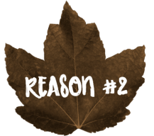 Give Thanks For Teachers Reason 2