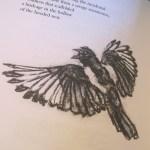 illustrations in Brood