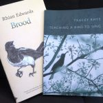 Poetry Pamphlets - Brood and Teaching a Bird to Sing