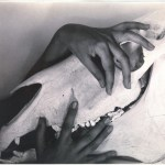 Stieglitz - 'Georgia O'Keeffe Hands and Horse Skull'
