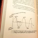 page in book - explaining humans