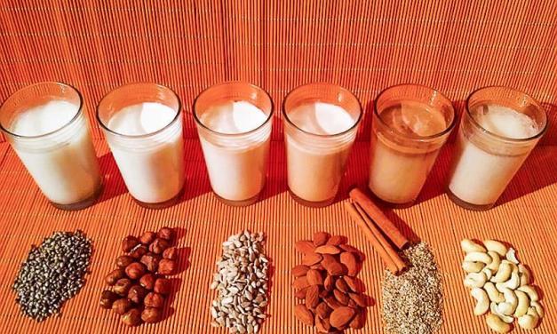 Nuss-und Saatenmilch – die gesunde Milchalternative – selbst machen