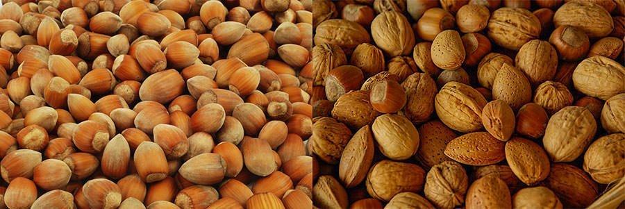 Warum Nüsse und Saaten einweichen?