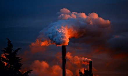 Vergiftung und Entgiften – Teil 2 – Gifte in unserer Umwelt