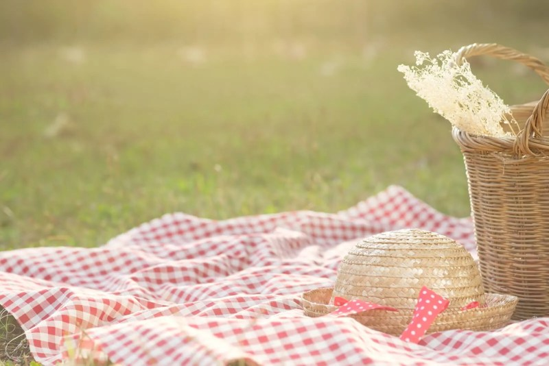 Outdoor picnic blanket with red and white squares with a picnic basket as part of the silent auction basket ideas.