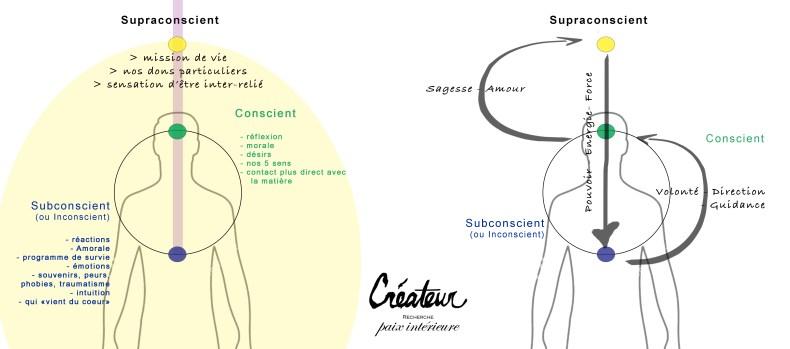 Les trois composantes de la Conscience Humaine