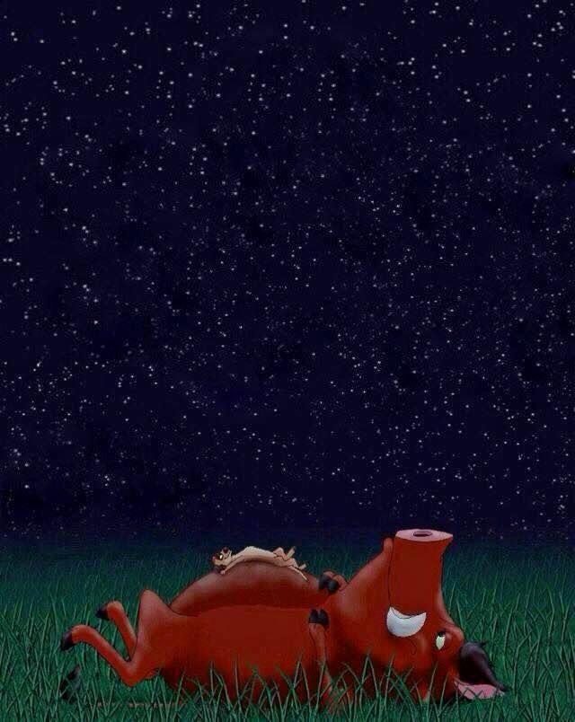 Pumba et Timon qui regardent le ciel étoilé ... joie !