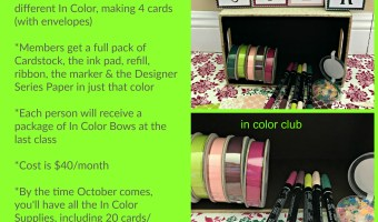 Announcing…New In Color Club!