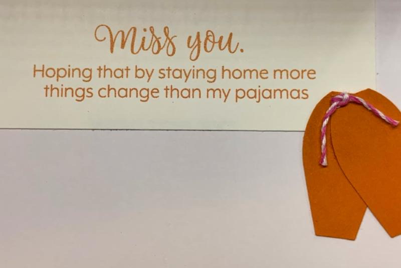 May 2020 Paper Pumpkin Cheryl Hamilton