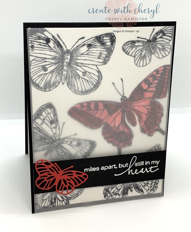 Butterfly Brilliance Card with Vellum