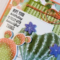 Flowering Cactus….