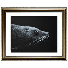Arctic Seal Live Icon