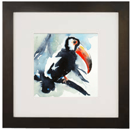 Capturing the Toucan Live Icon