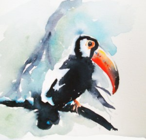 Toucan Project Image Watercolor