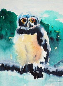 Wise as the Owl Watercolor Project Image
