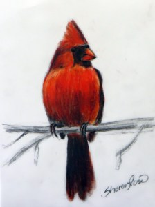 Winter Cardinal Project Image