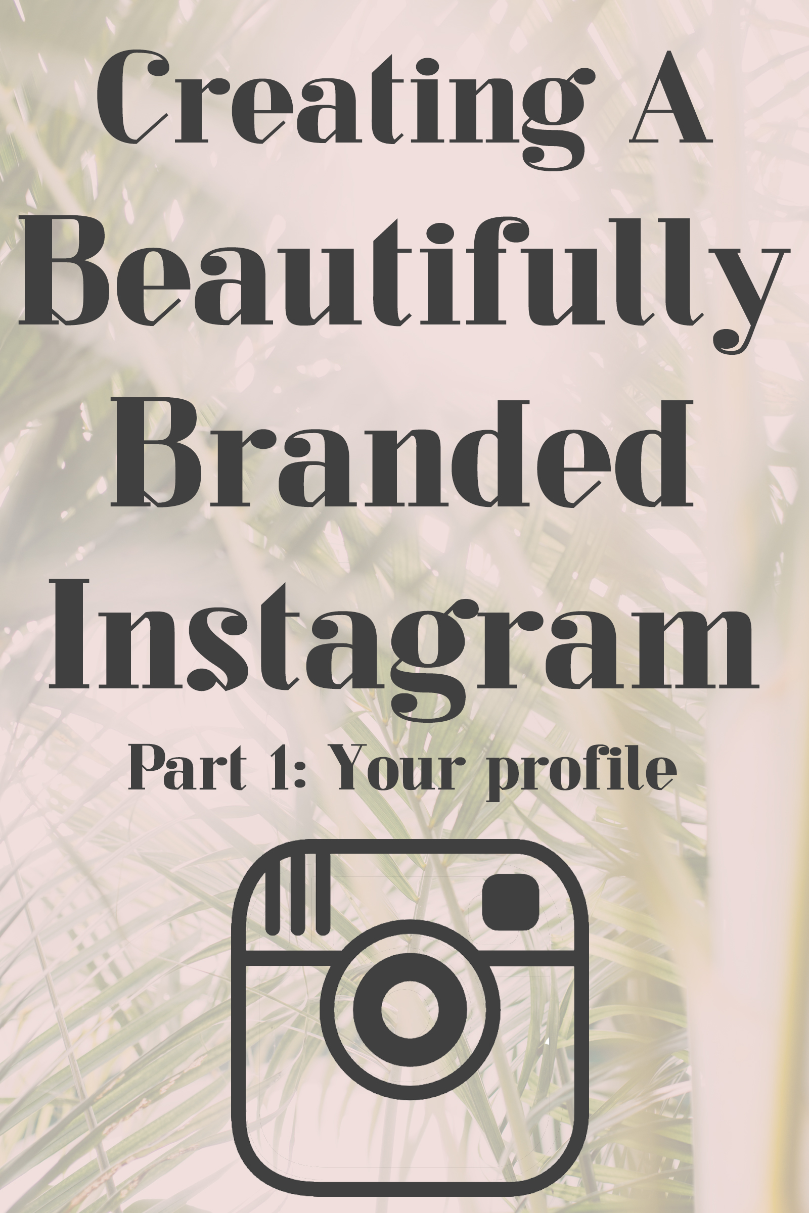 how to grow a business instagram account from 0