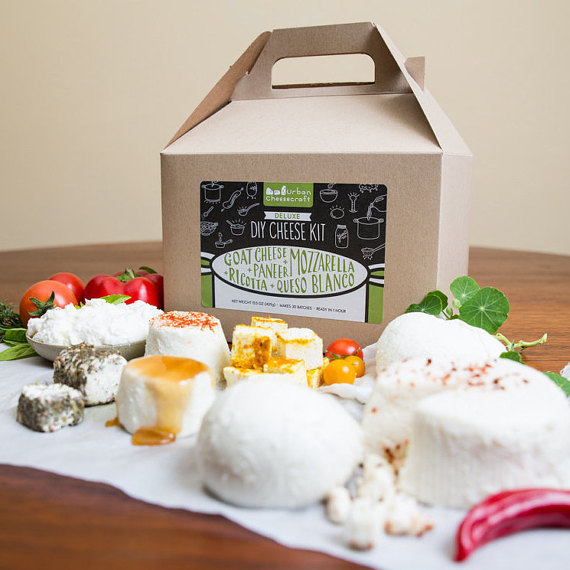 13 Modern DIYs to Try: Deluxe DIY Cheese Kit, Make Mozzarella, Ricotta, Goat Cheese and more