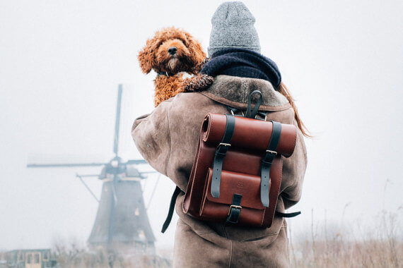 Benny Bee Leather Backpack Photo Tells a Story - These 15 Etsy Seller's Product Photos Will Make You Jealous