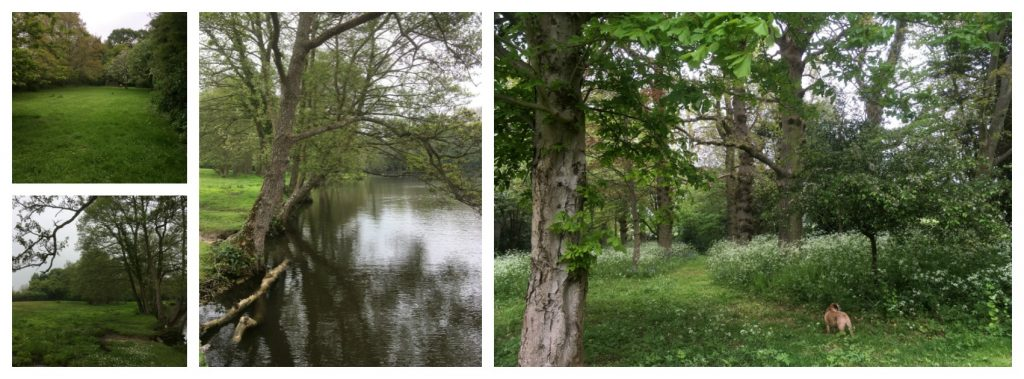 Decoy Ponds Sussex wedding venue outdoors celebrant Claire Bradford