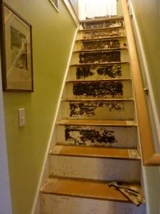 Wabi sabi stairs, Joy Overstreet interior design, Vancouver WA