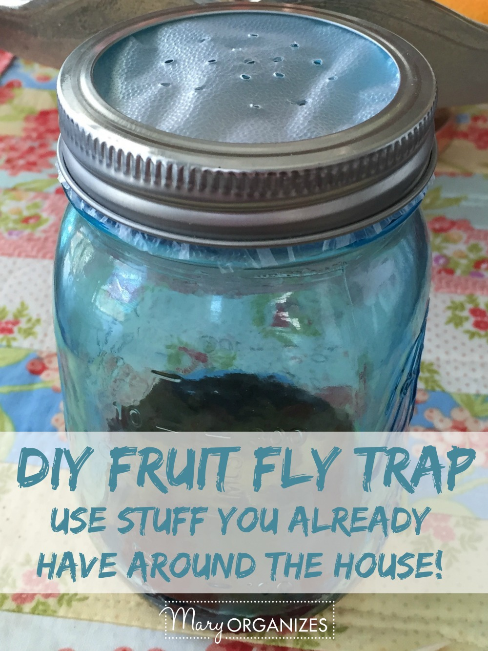 DIY Fruit Fly Trap -v