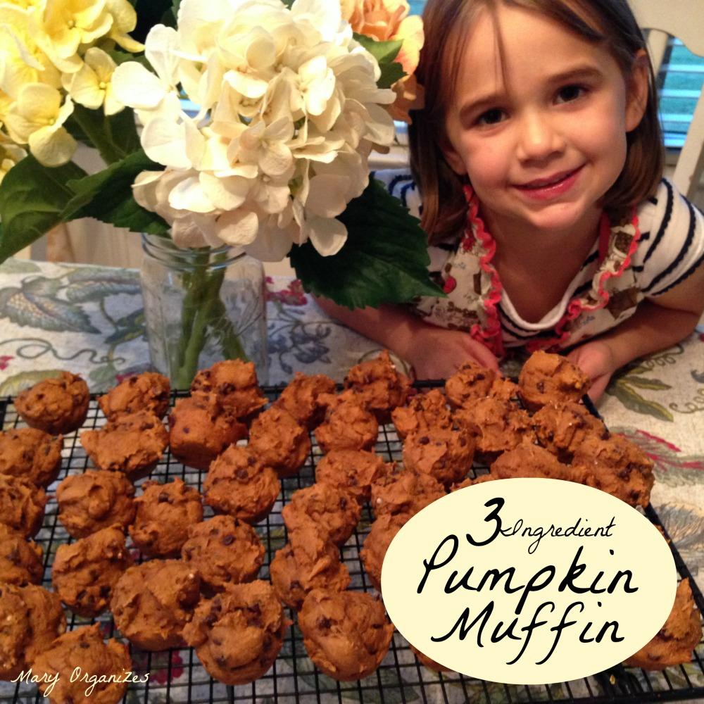 The 3 Ingredient Pumpkin Muffin