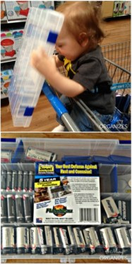 Shopping for a tacklebox to organize batteries