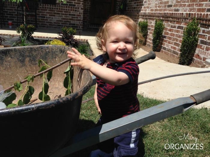 Landscape Reveal - little guy helps