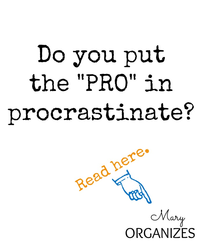 Do you put the pro in procrastinate