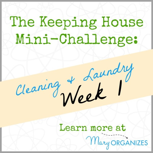 The Keeping House Mini-Challenge - Cleaning and Laundry - Week 1