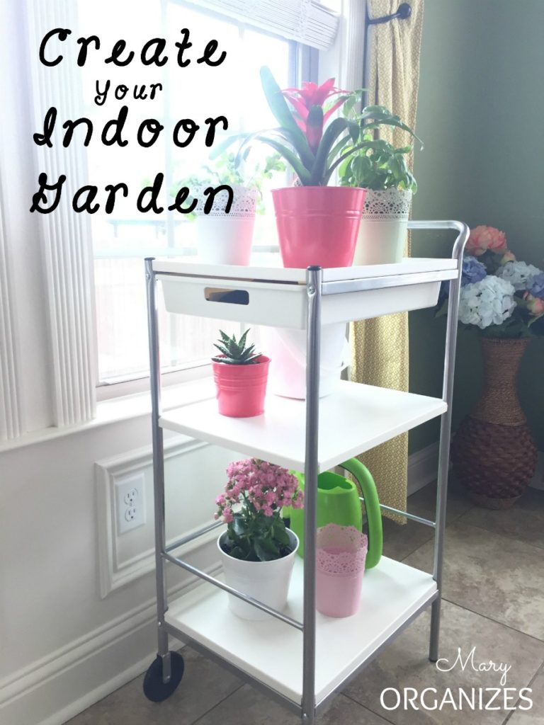 Create Your Indoor Garden