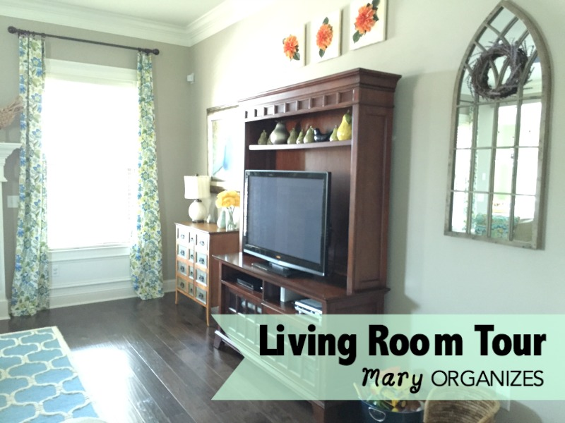 Living Room Tour - the tv