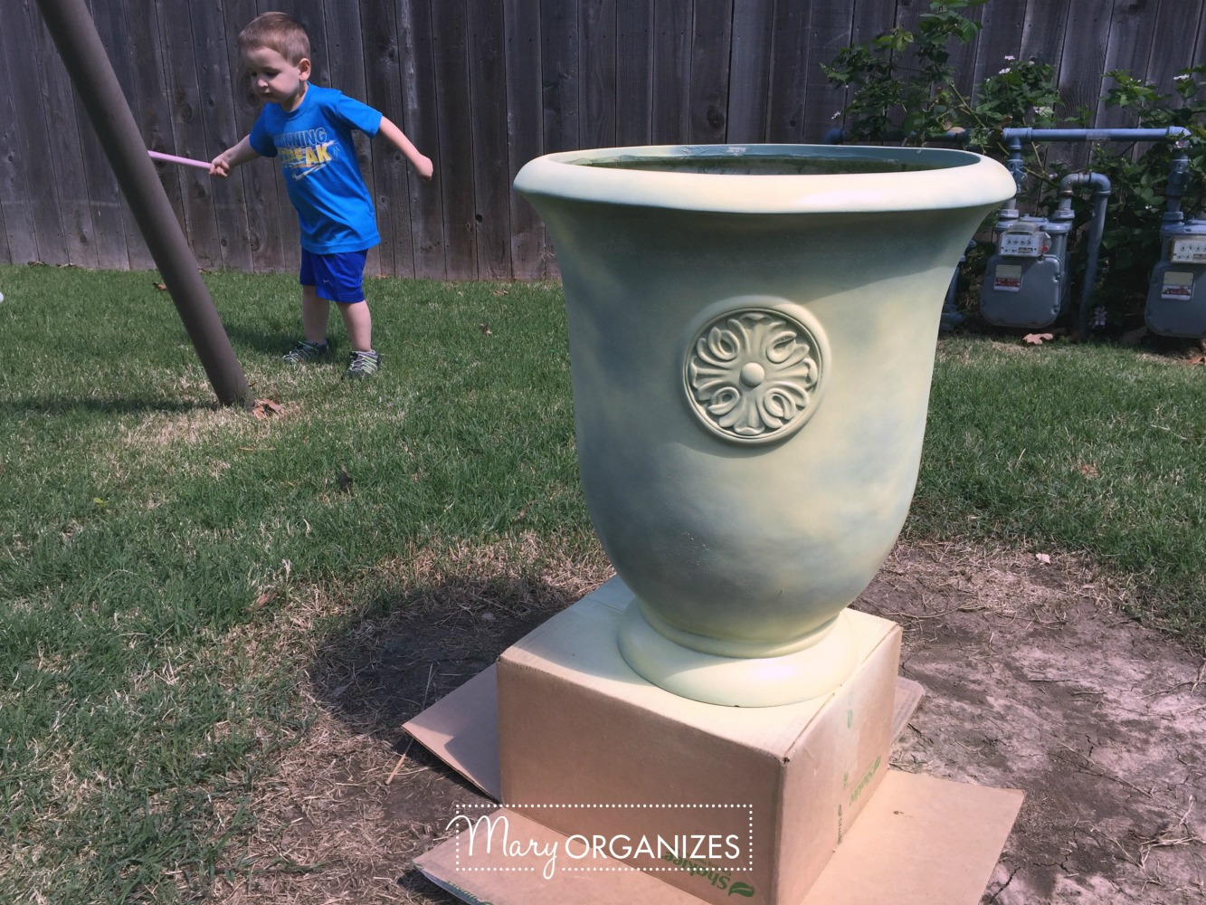 Planter Refresh and Hydrangea Propagation 5