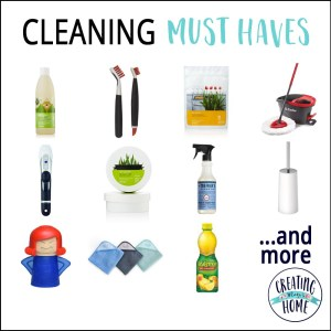 Cleaning Must Haves