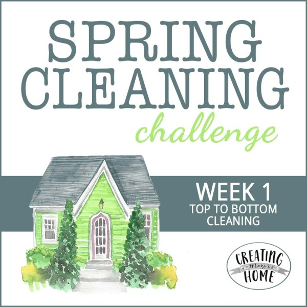 Cleaning Top to Bottom – {SCC Week #1}