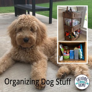 Organizing Dog Stuff