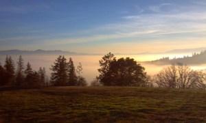 trails of morning light