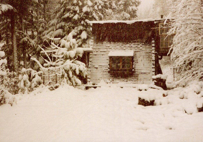Our little cabin deep in  the forest
