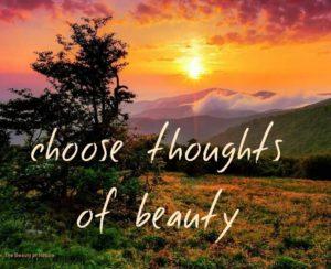 focus on beauty