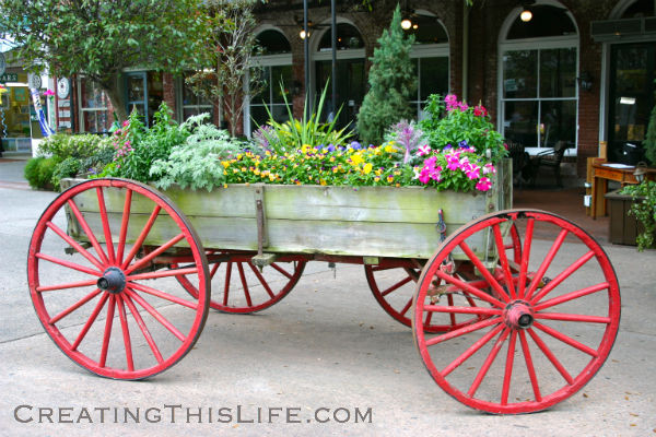 Savannah Flower Wagon