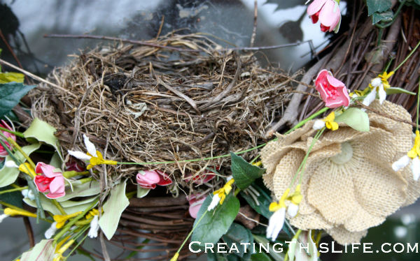 robins-nest-built-in-wreath